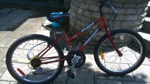 Supercycle Mountain Bike 24-in