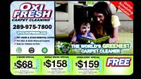 Greenest Carpet Cleaner in the World! Oxifresh.com