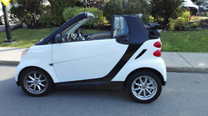 Smart passion fortwo 2008