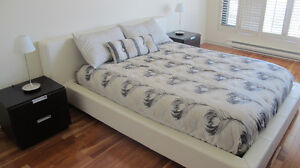 Modern style Queen bed with base