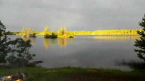 Cottage on Cole Lake $850~$1450/week, 2 hours from Ottawa$1,450