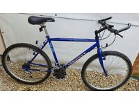 Serviced - Men's Townsend Mountain Bike
