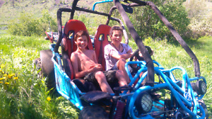 2 seater dune buggy