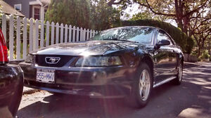 price lowered 2002 Ford Mustang Coupe (2 door)