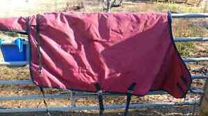 "82"" horse blanket for sale"
