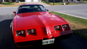 Now is your chance  to buy a 1980 firebird