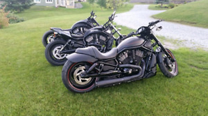 Harley Davidson Vrod night rod 2009