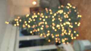 Christmas tree with built in lights all white