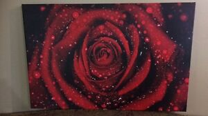 Rose canvas picture   Strathcona County Edmonton Area image 1