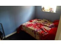 One double bed to rent/to let