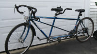 Tandem /double trek bike