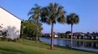 Club at Crystal, South Fort Myers, Fl - Avail. Nov. & Dec. 2015