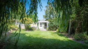 Charming Private Cottage for rent on vineyard acreage