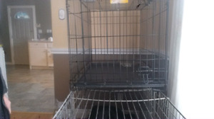 Collapseable dog kennel