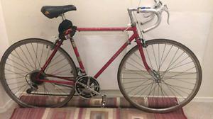 Nikishi road bike