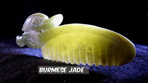 Archaic Burmese JADE carving, very old, quality!!!