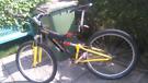 Adults mountain bike 24 gear