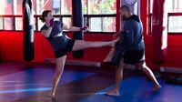 Cours privés : arts martiaux / boxe / kickboxing