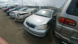 5 Toyota Corollas for Sale