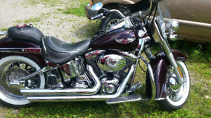 2005 Harley Davidson Soft Tail Deluxe