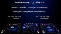 Service deejay animation mariage karaoke et autres