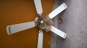 Ceiling Fan and Ceiling light