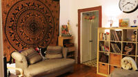 Amazing and cheap sublet in McGill ghetto / plateau winter 2016