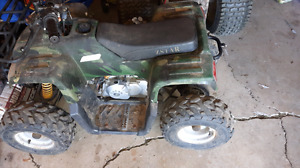 Z Star  110cc ATV  small project.