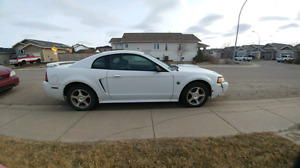 2004 ford mustang 40th anniversary LOW KMs