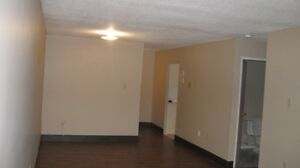 Spacious Apartment in Kingsville