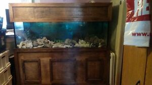135 US Gallon fish tank and stand