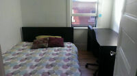 Room for rent!! Great location in the Glebe!