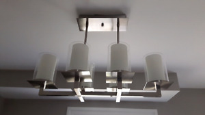 Stainless steel light fixture