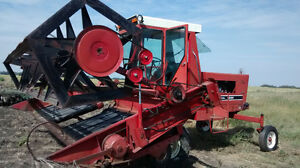 IHC 4000 gas swather Strathcona County Edmonton Area image 4