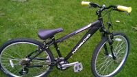 Norco Mountaineer 21speed excellent condition