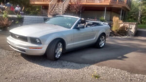 2006 Ford Mustang gris Cabriolet