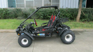 Dune buggy 300cc XRS Adult Size