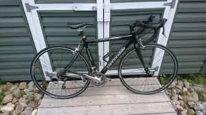Cannondale Synapse Road bike. Full carbon. (50 cm)