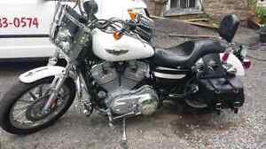 2005 Harley Sportster 883XL