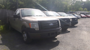 2009 Ford F-150 Pickup Truck: 3 to choose from!!!