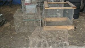 pet cages for sale Peterborough Peterborough Area image 5