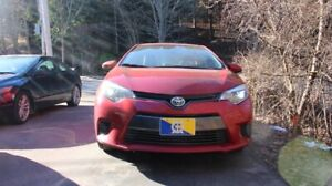 2016 Corolla LE - Excellent daily driver, low mileage, low cost