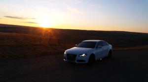 MINT 2012 Audi a4 quattro