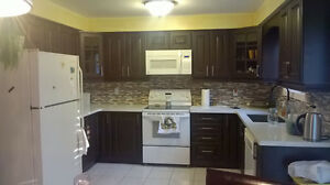 KITCHEN CABINET AND COUNTER$$$3200 (installation including)