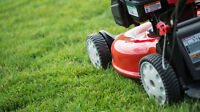 Need Lawn Care? We can help!