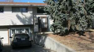 6 rooms for rent *REDUCED!* University Heights (2 mins to UofC)