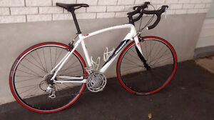 Specialized Secteur 2010