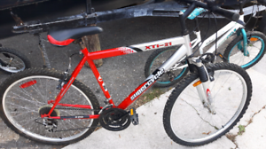 Supercylcle 21 Speed Mens Mountain Bike