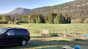 10 Acres all usable land with services near Salmon Arm BC