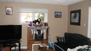 For rent a nice clean modern 2 bedroom basement apartment